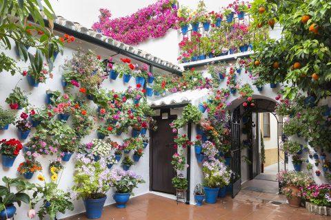 Mit Blumen geschmückter Innenhof in Córdoba
